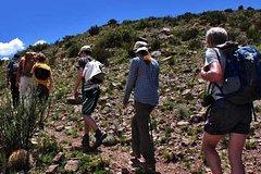 Imagen Trekking and Rappel to Quebrada del Salto Fall, from Mendoza
