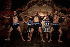 Imagen Auckland Shore Excursion: City Highlights & Cultural Performance (Private Tour)