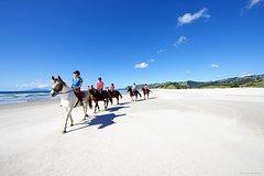 Imagen Private Tour: Beach Horse Riding, Wine Tasting & Art Trail
