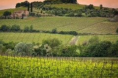 Private tour Brunello di Montalcino and Nobile di Montepulciano wine experi