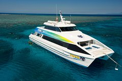 Great Barrier Reef Eco Snorkel and Dive Cruise from Cairns, Including Lunch