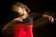 Imagen Malaga Flamenco Private Workshop