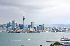 Auckland City Highlights Afternoon Beach and Rainforest Tour
