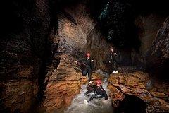 Imagen Small Group Tour - Waitomo Caves Black Water Rafting and Kiwi