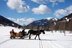 Ver la ciudad,Ver la ciudad,Salir de la ciudad,Actividades,Visitas en autobús,Tours de un día completo,Excursiones de un día,Actividades de aventura,Salidas a la naturaleza,Especiales,Tour por Salzburgo