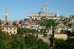 The best of Siena - Private Walking Tour