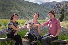 City tours,Excursions,Gastronomy,Gastronomic tours,Full-day excursions,Oenological tours,Wine Tour