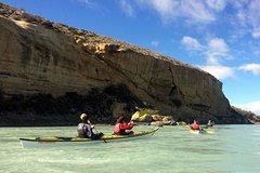 Imagen Recorrido en kayak en río La Leona desde El Calafate