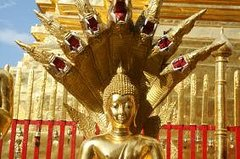Ver la ciudad,Tours con guía privado,Especiales,Tour por Chiang Mai,Excursión a Templos de Chiang Mai