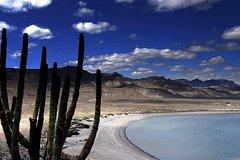 City tours,Full-day tours,La Paz Tour