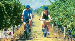 Imagen Hawkes Bay Wineries Self-Guided Bike Tour