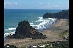 Imagen Auckland's Rainforest, Black Sand Beaches and Wilderness Trilogy Eco Tour