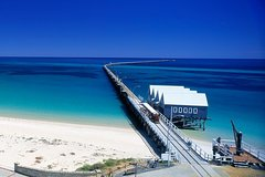 Imagen Full-Day Busselton Jetty, Train Ride & Dophin Discovery