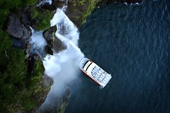 Imagen Half-Day Milford Sound Nature Cruise and Flight from Queenstown