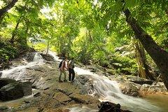 Imagen Kuala Lumpur: A Day in the Rainforest