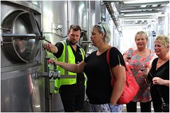 Imagen Half-Day Ultimate Wine Tour in Napier