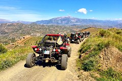 Imagen Malaga Shore Excursion: Panoramic Buggy Tour with Wine Tasting in a Historical Cellar
