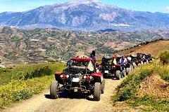 Imagen Panoramic Buggy Tour from Malaga