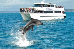 Imagen Full-day Bay of Islands, Hole in the Rock and Dolphin Cruise Tour from Auckland