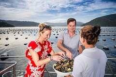 Imagen Marlborough Sounds Seafood Cruise from Picton