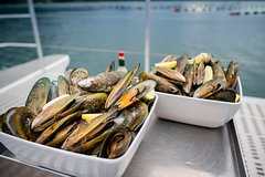 Imagen Marlborough Sounds Greenshell Mussel Tasting Cruise from Havelock