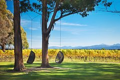 Imagen Marlborough Wine Tour and Cruise from Picton or Blenheim