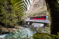 Imagen Milford Sound Coach & Scenic Cruise ex Te Anau with International Buffet Lunch