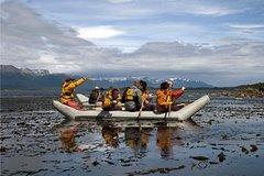 Imagen Ecoaventura de día completo en la isla Gable en el canal Beagle