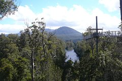Imagen Huon Valley and Tahune Forest Airwalk Tour from Hobart