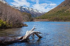 Salir de la ciudad,Actividades,Excursiones de un día,Salidas a la naturaleza,Excursión a Cerro Tronador