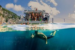 Imagen Snorkel or Dive the Poor Knights Tour from Auckland in Small Groups