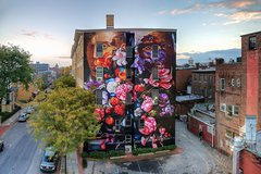 Kingston and Hudson Valley Street Art Mural Private Tour