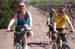 Imagen Excursión en bicicleta por la región vinícola de Mendoza