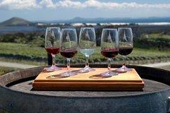Imagen Excursión de cata de vinos a Maipú desde Mendoza con bodega Trapiche