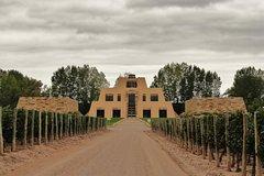 Imagen Recorrido vinícola de Catena Zapata desde Mendoza