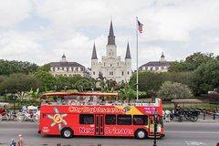 Ver la ciudad,Hop-On Hop-Off,Tour por Nueva Orleans