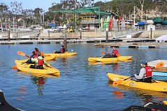 City tours,City tours,City tours,City tours,Activities,Activities,Walking tours,Bike tours,Full-day tours,Theme tours,Historical & Cultural tours,Water activities,Water activities,Sports,Sports,