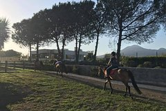 Horse Riding Experience and Wine Tasting Tour