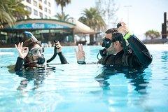 Imagen Try Scuba Diving Experience: Sydney