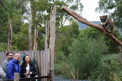 Imagen Yarra Valley Wildlife Express (Private Tour)
