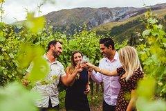 Imagen Wine Sampler Tour
