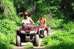 City tours,Activities,Activities,Activities,Bus tours,Adventure activities,Adventure activities,Adventure activities,Adrenalin rush,Adrenalin rush,Nature excursions,Specials,