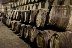 Ver la ciudad,Gastronomía,Tours gastronómicos,Tours enológicos,Cata de vinos,Con tour por Oporto
