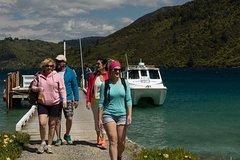 Imagen Marlborough Sounds Cruise & 3-Hour Scenic Walk