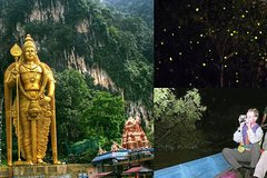 Imagen Fireflies Tour combine with Batu Cave Visit