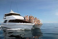 Imagen Seastar Luxury Outer Great Barrier Reef Island and Reef Tour from Cairns