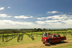 Imagen Private Tour: Mornington Peninsula Behind-the-Scenes Gourmet Food and Wine Tasting Experience