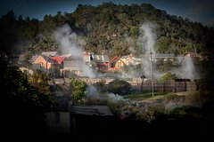 Imagen Rotorua Highlights w Whakarewarewa Maori Village - Tauranga Shore Excursion