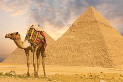 Day Trip to Pyramids & Museum (from port said)