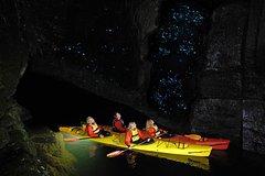 Imagen Evening Glow Worm Kayak Tour in Tauranga